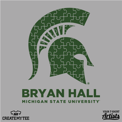 BRYAN HALL, Michigan State, College